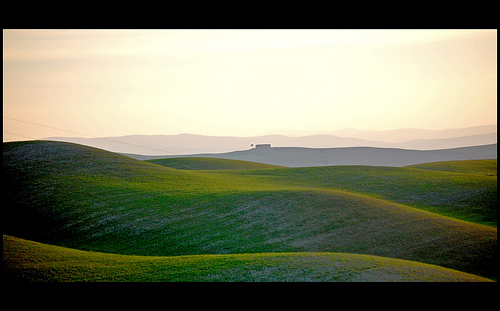 Rolling green hills sculpted by the sunset light landscape photograph