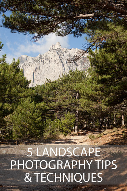 5 landscape photography tips