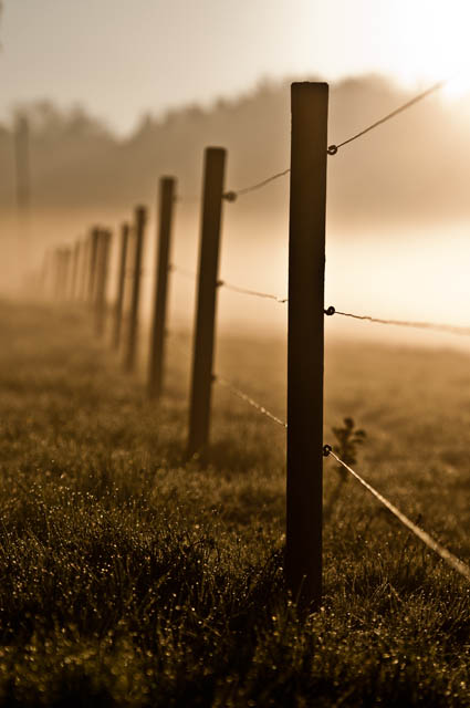 Landscape photo of a fence around sunrise, taken using a telephoto lens