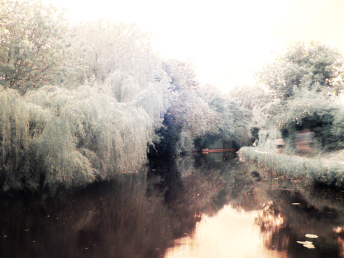 Photo taken with a camera sensitive to infrared light and an infrared filter