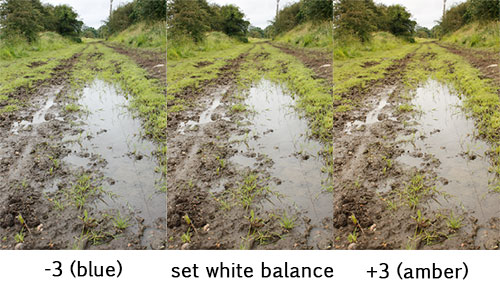 Set of bracketed white balance images