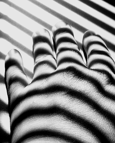 Zebra shadows on hand - taken with a Superzoom compact camera