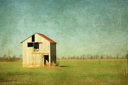 photo of barn in field, minimalistic composition with barn placed on the intersection of thirds