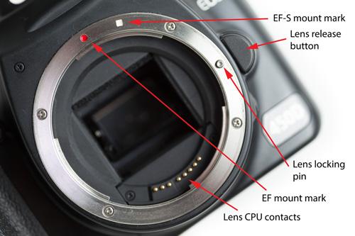 Canon EF / EF-S lens mount
