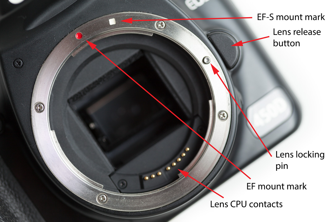 Tight lens mounting -- Canon EOS Digital Cameras in