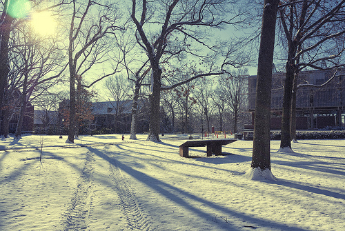Snow @ Wellesley College, Nikon V1, 10mm/2.8 lens