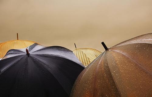 Wet umbrellas