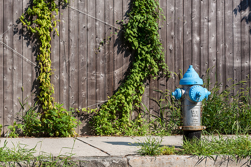 Fence and fire hydrant - medium aperture (f/8) used to get all of the scene in reasonably sharp focus