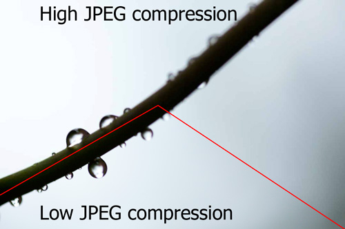 Example image showing difference between high JPEG compression and low JPEG compression