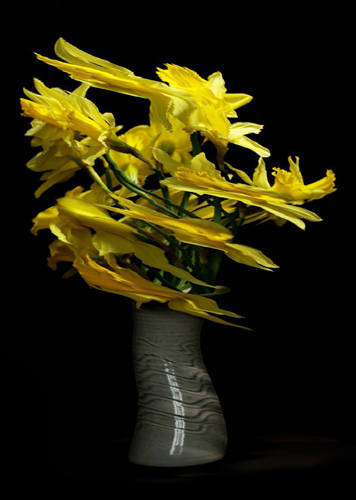Slit-scan style photo of a Vase of daffodil flowers rotating on a turntable