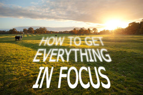 How to get everything in focus