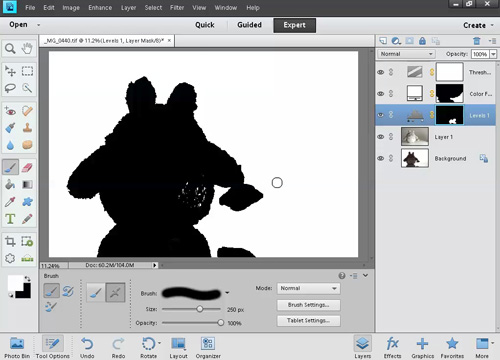Levels adjustment selectively applied using layer mask