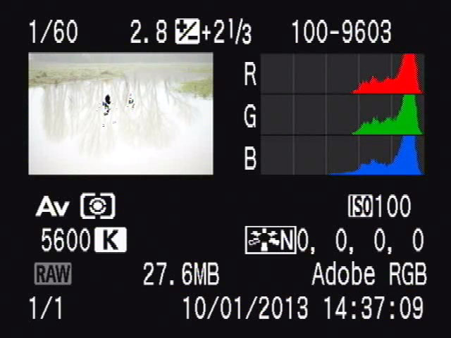 Image review screen showing blinking highlight warning and histogram
