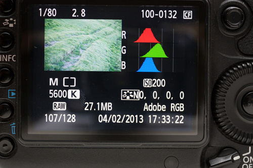 Although the image looks very bright in dim light on the camera's LCD, the Histogram shows the image is actually quite dark
