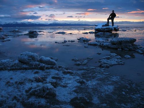 """""""Captain of Kincaid."""" Kincaid Park, Anchorage, Alaska"""