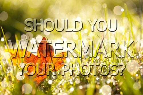 Should you watermark your photos?