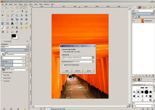Convert to sRGB color space in GIMP