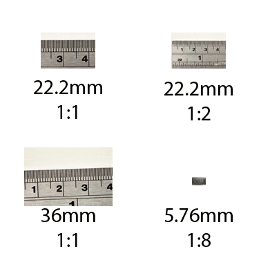 Images taken with cameras with different sized image sensors and at different magnifications compared