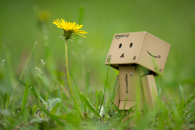 Danbo and Dandelion with soft lighting and low contrast to create a peaceful image