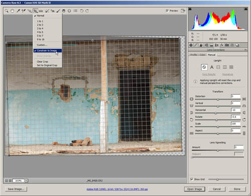 Cropping away empty areas of the image with crop tool set to 'constrain to image'