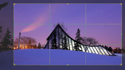 Cropping image to remove tree branches poking in at the edge