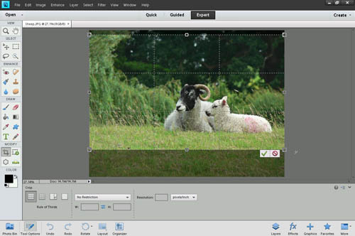Using the crop tool to crop a photo in Photoshop Elements