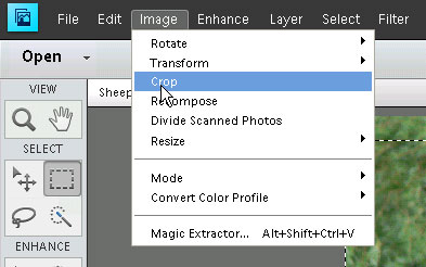 Crop to selection menu item in Photoshop Elements