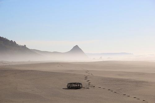 Fog in distance at beach