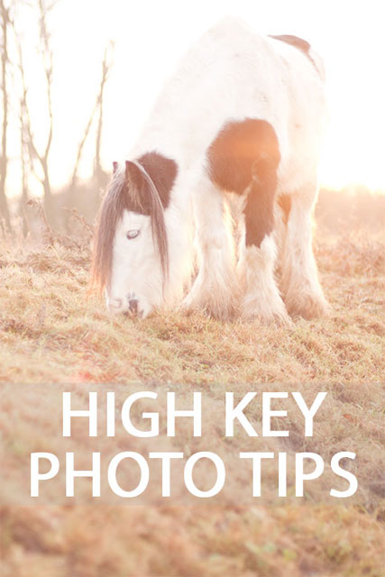 High Key Photography Tips