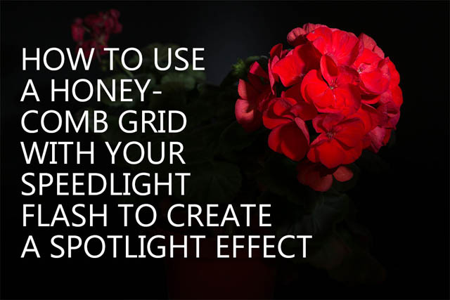 How to use a honeycomb grid with your speedlight flash to create a spotlight effect