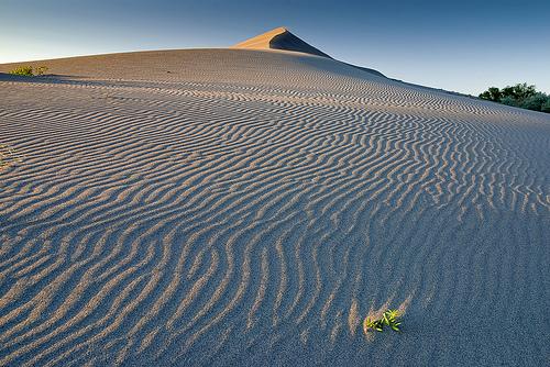Bruneau Sand Dune and rippled sand sunset