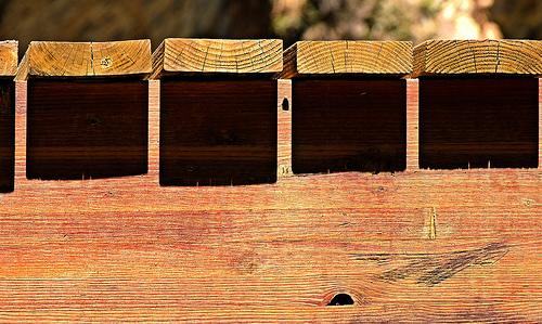 Harsh noon shadows on wood