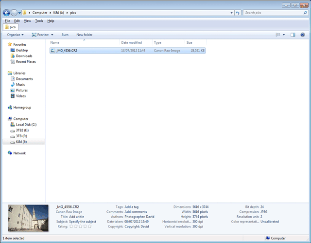 Viewing EXIF data for an image in the file info pane at the bottom of Windows Explorer