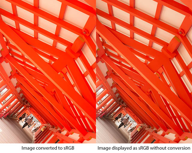 The difference between an Adobe RGB image converted to sRGB (left) and not converted (right) when displaying as sRGB (e.g. in a web browser). The left image has a high color saturation (as per the original imsge) while the right image is less saturated and more drab.