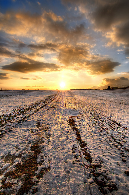 Sunset over snowy field, HDR landscape photo