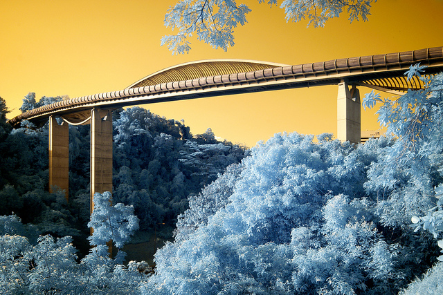 Goldie infrared image of bridge and trees, processed to give blue foliage and a golden sky