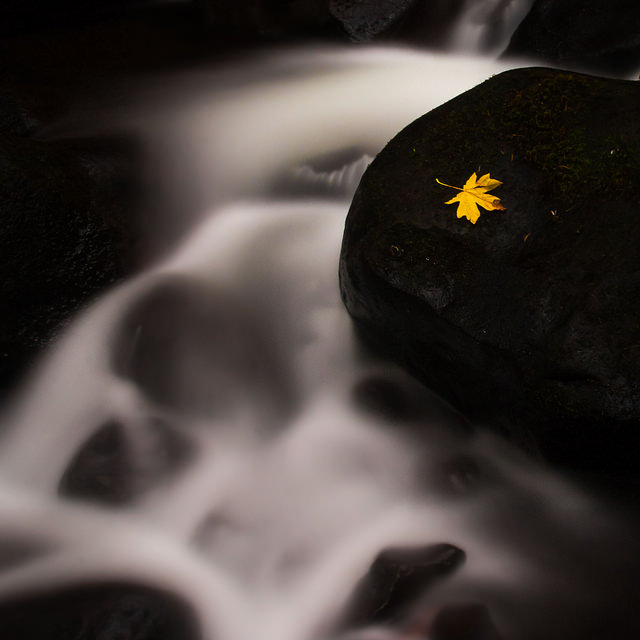 Long exposure photo of water running over dark rocks with a single bright yellow leaf on one of the rocks