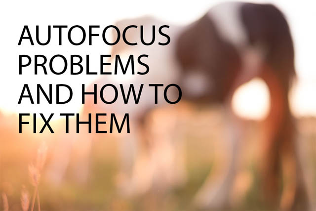 Autofocus problems and how to fix them