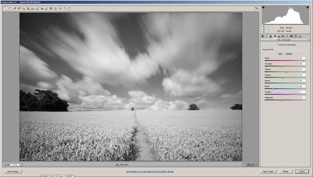 Image converted to Black & White in ACR