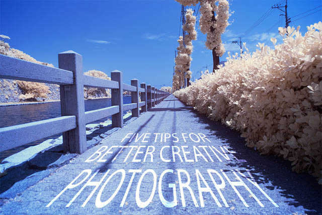 Five tips for better creative photography