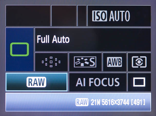 With this particular camera you change the image quality (RAW / JPEG) and drive mode (single shot or continuous shooting) in Auto mode, but nothing else.