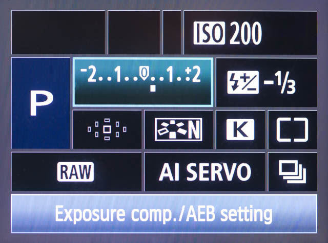 In Program Auto (P) Mode, while the camera still chooses the aperture and shutter speed settings automatically, all the other settings are adjustable