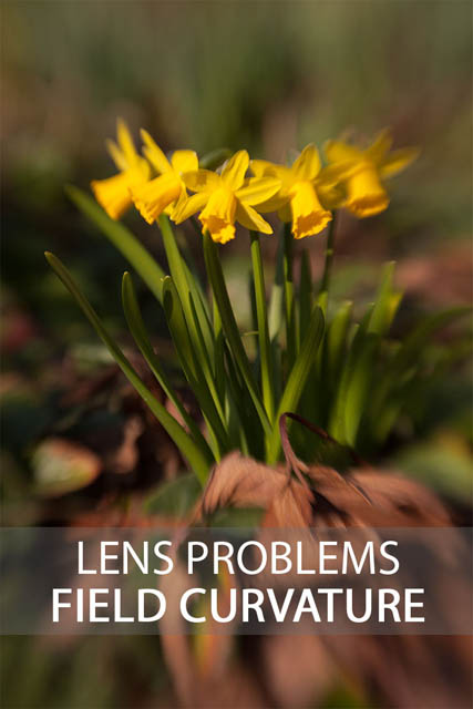 Lens Problems - Field Curvature