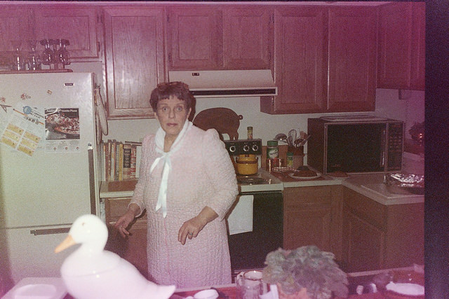 Found photo of a woman looking surprised in a kitchen with a plastic or porcelain white duck in the foreground