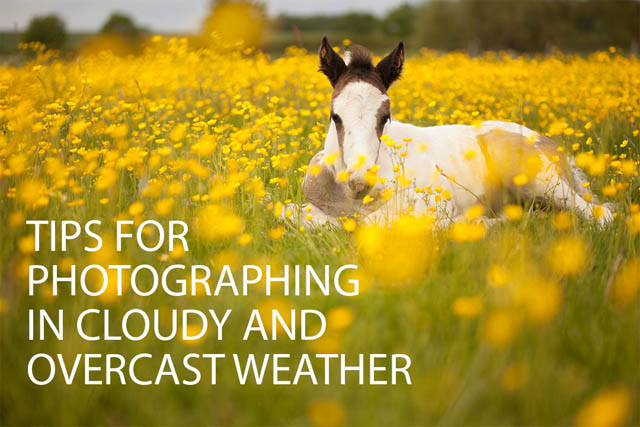 Tips for photographing in cloudy and overcast weather