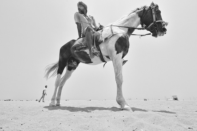 Man on a horse taken with a wide angle lens looking up