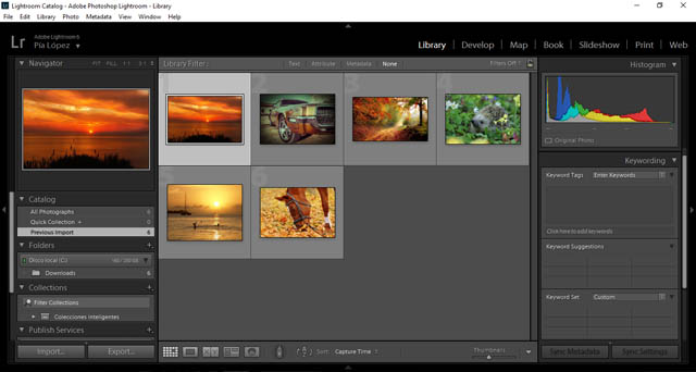 Keywording photos in Lightroom