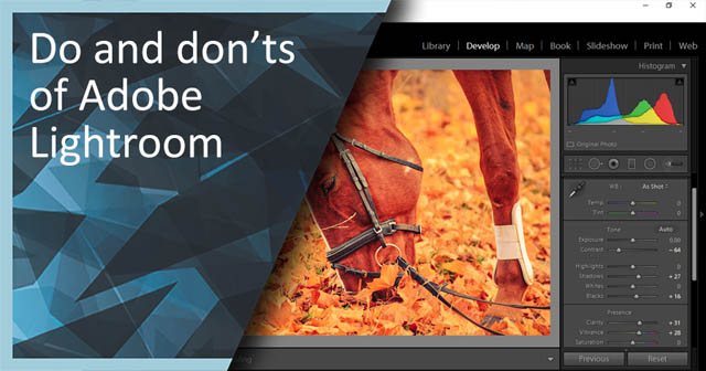Do and Don'ts of Adobe Lightroom
