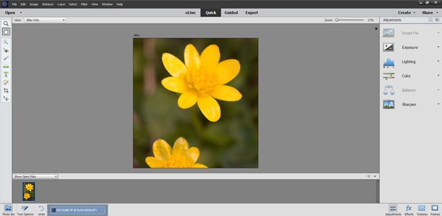 Photoshop Elements features different levels of control to tailor it to your skills