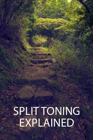 Split Toning Explained